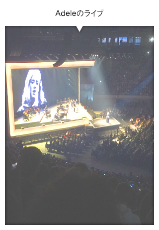 Adeleのライブ